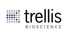 Trellis07